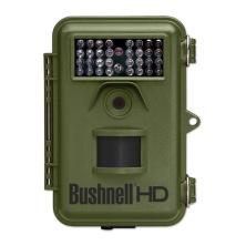bushpic119739